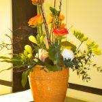 Blumen wilheine Hannover - Blumen-Abo